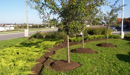 Corporate Landscaping Services